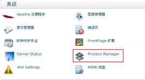 hostMonster主机 Process Manager